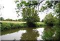 TQ6547 : River Medway by N Chadwick