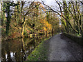SJ9490 : Peak Forest Canal by David Dixon