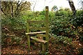SJ5154 : Stile near Bickerton by Jeff Buck