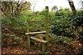 SJ5154 : Stile near Bickerton by Jeff Buck