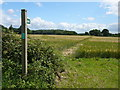 TM0041 : Field path near Pott's Farm, Hadleigh Heath by Colin Park
