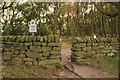 SJ5255 : Entrance to Bulkeley Hill Wood by Jeff Buck