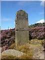 SK2882 : Old milestone on the Houndkirk Road (track) by Colin Park