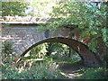 SE6480 : Railway bridge across River Rye by T W Eyre