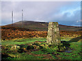 J2974 : Black Mountain North Triangulation Pillar by Rossographer