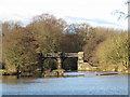 SJ6469 : Bridge over the old Weaver by Stephen Craven