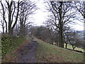 SJ9376 : Ridge path on Kerridge Hill by Stephen Craven