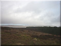 SD8480 : Rough moorland above the forest, Low Greenfield Lings by Karl and Ali