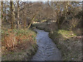SJ8393 : Chorlton Brook by David Dixon
