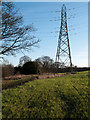 NZ2031 : Electricity transmission pylon in field by Trevor Littlewood