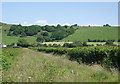 SN6760 : Bridleway and hillside north of Tregaron, Ceredigion by Roger  Kidd