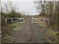 TL4681 : Hale Fen Lane by Hugh Venables
