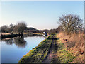 SJ7488 : Bridgewater Canal by David Dixon