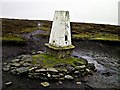 SK1796 : Outer Edge Trig Point by Karl Smt