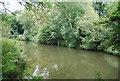 TQ7453 : River Medway by N Chadwick