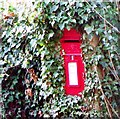 TQ2516 : Postbox, Church Lane, Albourne by nick macneill