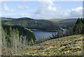 SN7950 : Forestry clear fell and Llyn Brianne, Ceredigion by Roger  Kidd