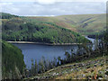 SN8050 : Tywi Forest and Llyn Brianne by Roger  Kidd