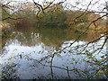 SP3634 : Valley bottom lake by Michael Dibb