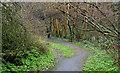 J4078 : Path, Glenlyon, Holywood (3) by Albert Bridge
