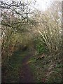 ST6362 : Footpath off School Lane, Chelwood by John Lord