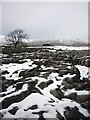 SD7774 : Snow covered limestone pavement, Fell Close by Karl and Ali