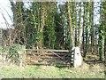 SE4806 : Private entrance to Bilham Park by Christine Johnstone