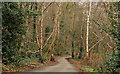 J3583 : The Glen Park, Whiteabbey (2) by Albert Bridge