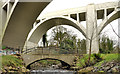 J3583 : Bleach Green viaducts, Whiteabbey (9) by Albert Bridge