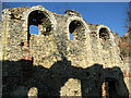 TM3669 : The ruined Cistercian abbey in Sibton : Week 5