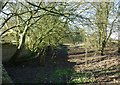 SU5182 : The old railway bed at Churn Halt by Fly