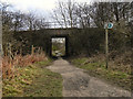 SJ7394 : Footpath Under The Embankment by David Dixon