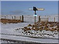 NY9078 : Signpost on the Reivers Route by Oliver Dixon