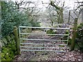 SE0024 : Gate into Sandy Pickle Wood, Cragg Vale by Humphrey Bolton