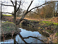 SJ7190 : Red Brook, Partington by David Dixon