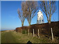 TF4925 : East bank lighthouse near Guy's Head north of Sutton Bridge by Richard Humphrey