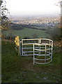 ST5966 : Gate with a view by Neil Owen