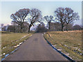 SJ9582 : Lyme Park by David Dixon
