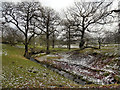 SJ9684 : Lyme Park, Bollinhurst Brook by David Dixon