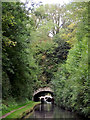 SJ8219 : Cowley Tunnel south of Gnosall, Staffordshire by Roger  Kidd