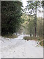 SO9875 : Monument Lane, Lickey, Snowy Path by Roy Hughes