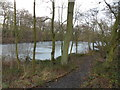 SE2804 : Blacker Dam, Silkstone Common by Samantha Waddington