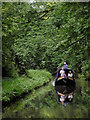 SJ6931 : Narrowboat in Woodseaves Cutting near Market Drayton, Shropshire by Roger  Kidd