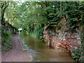 SJ6833 : Canal north of Tyrley Bottom Lock near Market Drayton by Roger  Kidd