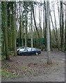 SU8292 : Sandage Wood by Graham Horn