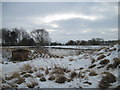 SE7569 : Semi  Frozen  Pond  Sawkill  Farm by Martin Dawes