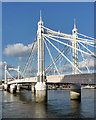 TQ2777 : Albert Bridge (1) by Stephen Richards