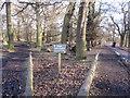 SJ7386 : Deer Sanctuary Dunham Massey by Peter Turner