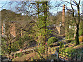 SJ8382 : Path to Quarry Bank Mill by David Dixon