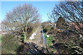 SU5802 : Fareham to Gosport BRT - View from Brewers Arch (1) by Barry Shimmon